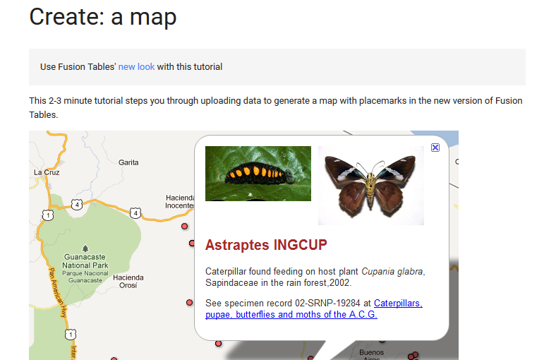 Google Fusion Mapping Tool.